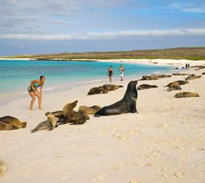 Gardner Bay Archipel ATC Cruises Galapagos Islands Ecuador