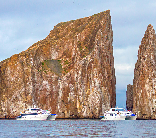 Archipells stable & wide Galapagos Islands safe travel groups all you need is Ecuador awaits you