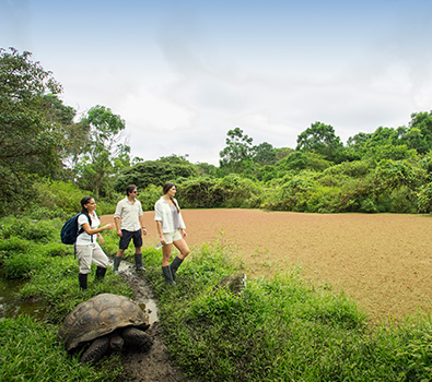 Archipel Galapagos Islands wildlife Atc Cruises for travellers