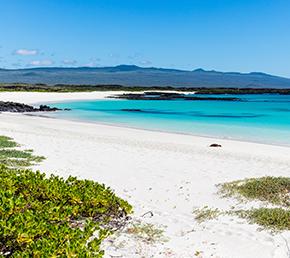 Cerro Brujo Archipel ATC Cruises Galapagos Islands Ecuador